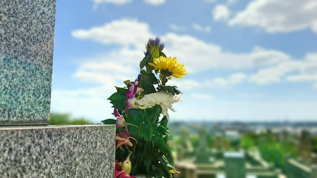 改葬手続きの流れと千葉市の事例